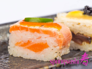 Hako-Salmon-(Web-with-logo)